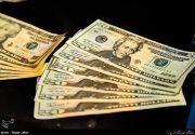 عدم وحدت رویه دولت و بانک مرکزی در اختصاص ارز به واردات