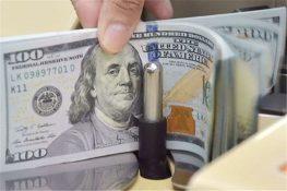 در گفتگو با مهر اعلام شد؛ استقبال ازبخشنامه ارزی بانکی/تجار خود صرافیشان را انتخاب می کنند