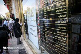 مهر گزارش میدهد؛ تب و تاب دلالان برای اثرگذاری در بازار ارز